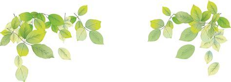 green leaves png image veerendra vijaya pinterest leaf background png 3229 215 1154 flower design pinterest