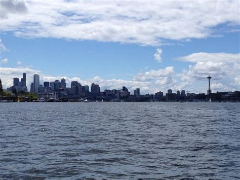 water boat tours seattle seattle skyline from water tour