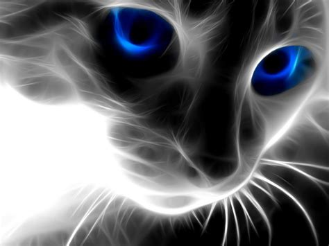 awesome wallpaper of cat awesome wallpaper