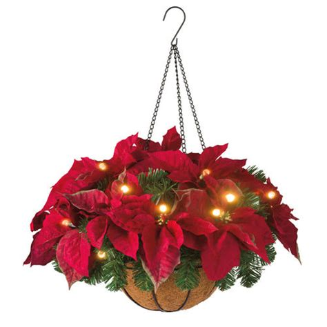 how to make a christmas yard poinsettia lighted pre lit poinsettia basket at brookstone buy now