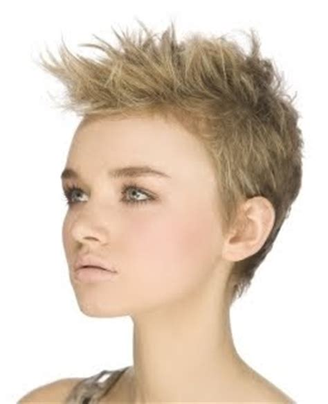 7 Hair Styles For 2010 by Trend Hairstyles For 2010 2010 Choppy Pixie