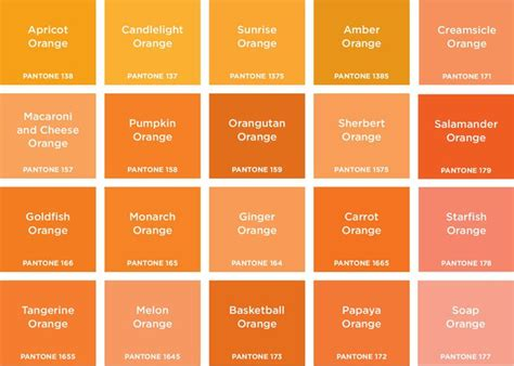 shades of orange names orange is the happiest colour brand design pinterest