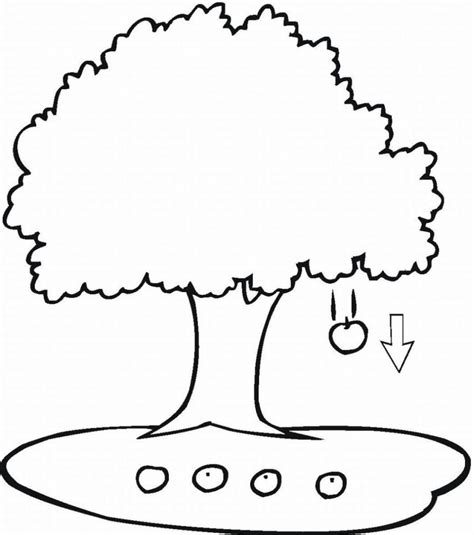 Clip Tree Outline by Clip Family Tree Outline Clipart Panda Free Clipart Images