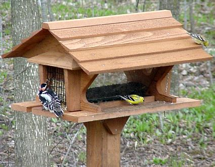 cedar bird feeder plans » woodworktips