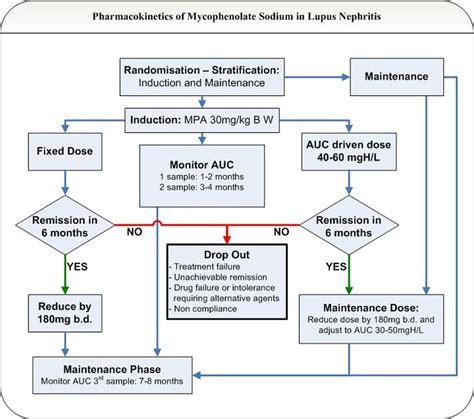 design criteria sle a protocol for the pharmacokinetics of enteric coated