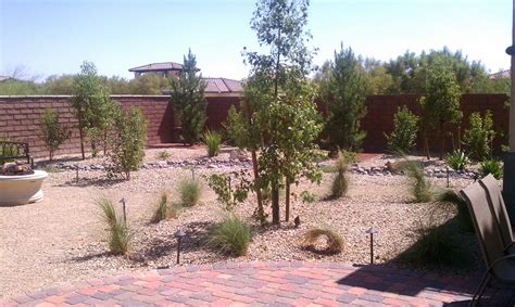 backyard landscaping las vegas las vegas backyard landscaping nevada front yard landscaping pictures studio design