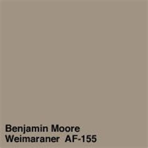 25 best ideas about benjamin weimaraner on taupe paint colors brown walls
