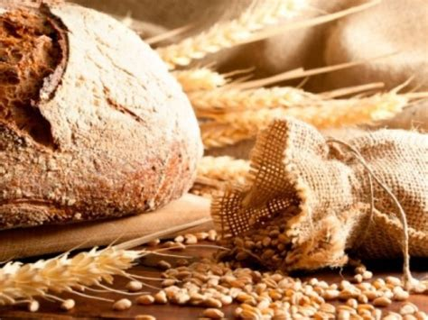 food without grain whole grain food not always healthy indiatimes
