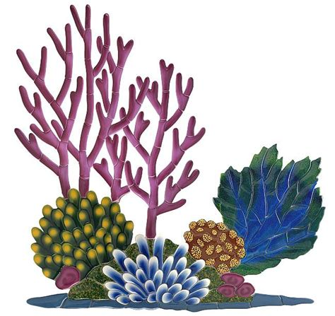 coral reef crustaceans from sea to papua books this coral reef clipart is for your task browse