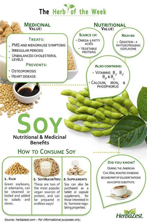 protein 0 cholesterol 29 best infographics images on health foods