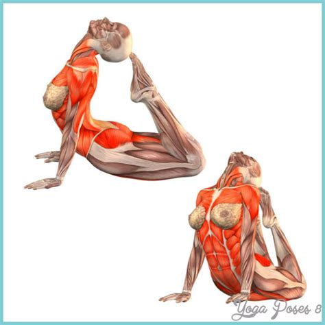 boat pose energy snake pose yoga yogaposes8