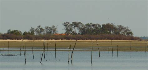 winter park boat tour schedule on the arcachon bay boat complete tour sea schedules prices