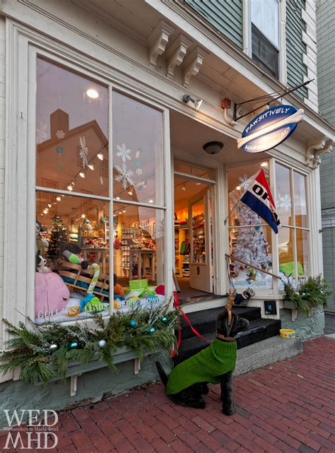 creature comforts marblehead keep it local pawsitively marblehead marblehead ma