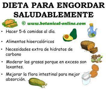 alimentos para engordar piernas desnutrici 243 n dieta para engordar