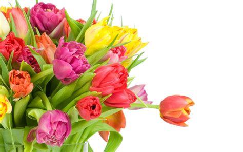 rosas para mama flores para el 10 de mayo 2012 auto design tech