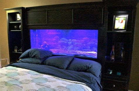 aquarium bed headboard aquarium headboard aquarium pinterest