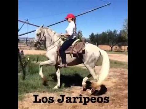 httpzoofilia mujer ensartada por caballo mujer montando caballo newhairstylesformen2014 com
