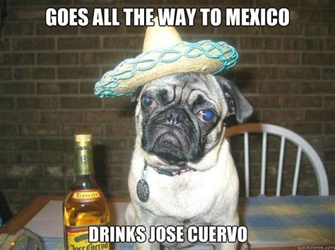 Jose Cuervo Meme - jose cuervo meme 28 images 25 best memes about jose