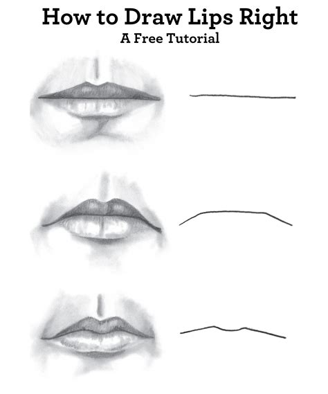 how to draw for beginners free sketches of faces for beginners drawing of sketch