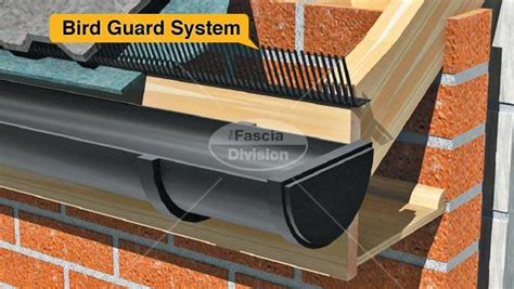 the fascia division bird guards bird guard systems