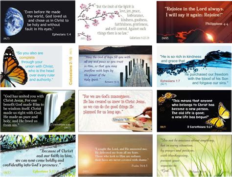 cards and verses 31 bible verse cards cheri gregory