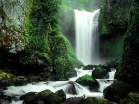 six steps to surviving a waterfall stevenahill com