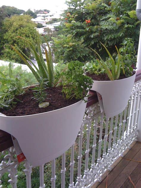 Balcony Herb Garden Ideas Our Balcony Herb Garden Dining Lounge Balcony