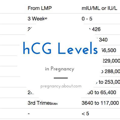 normal hcg levels  pregnancy pregnancy