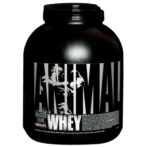 Animal Whey Chocolate buy universal nutrition animal whey isolate loaded whey