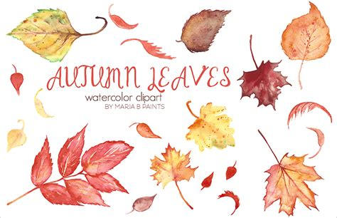 Autumn Leaf Templates by 24 Leaf Template Printable Designs Free