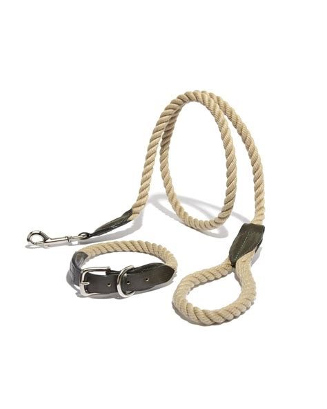 rope leash leather rope collar and leash wagwear