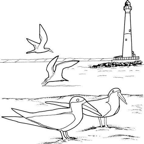 coloring page lighthouse free printable lighthouse coloring pages for