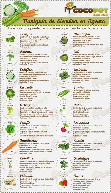 Vegetable Garden Menu The World S Catalog Of Ideas