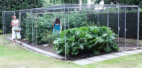 vegetable garden netting frame fruit cages vegetable cages crop protection auckland nz