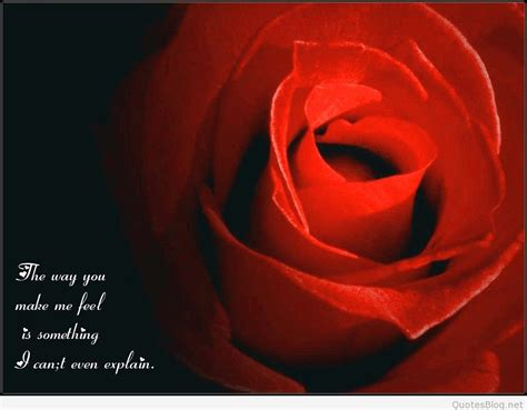 roses quotes