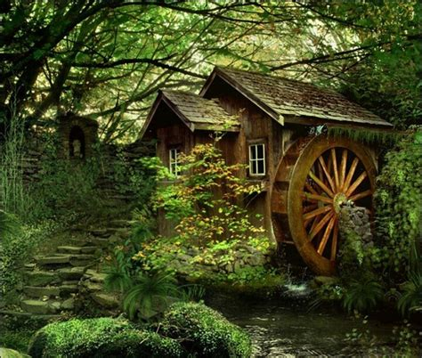 In A Cottage In A Wood by Cottage In The Woods Just Dreaming