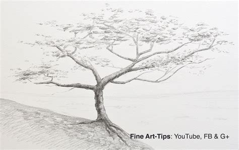 pencil tree how to draw a tree with pencil