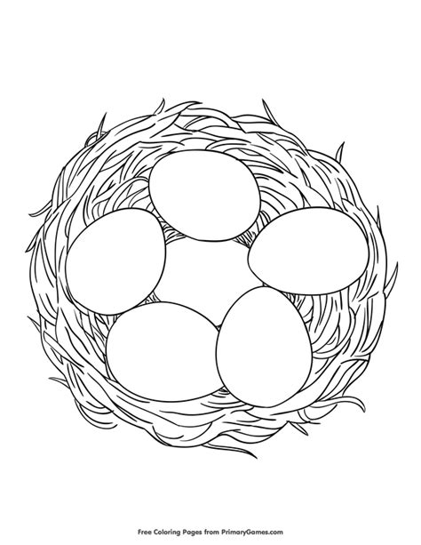 Coloring Page Nest by Coloring Pages Ebook Eggs In A Nest Coloring