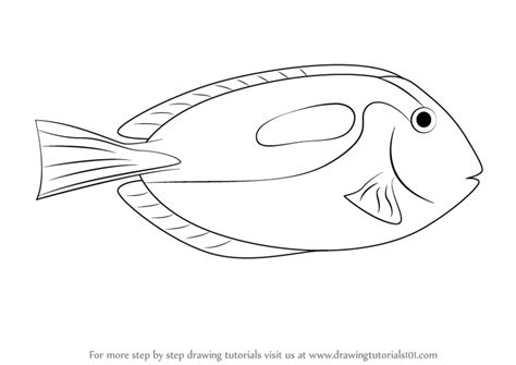 yellow tang coloring page step by step how to draw a blue tang drawingtutorials101 com