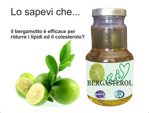 bergamotto in cucina bergamotto citrus bergamia bergamotto originale di calabria