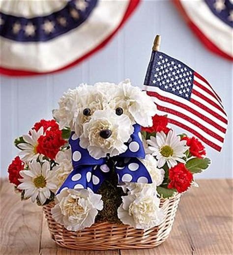 yankee doodle flower 17 best images about fourth of july and patriotic on