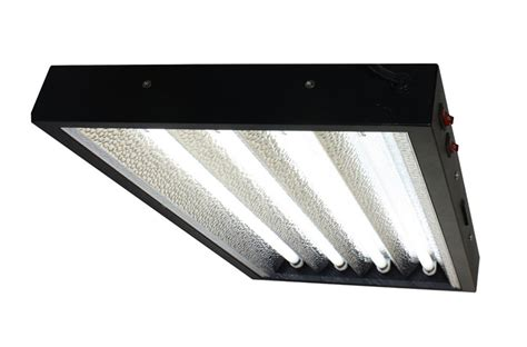 best t5 grow lights t5 grow light fixtures