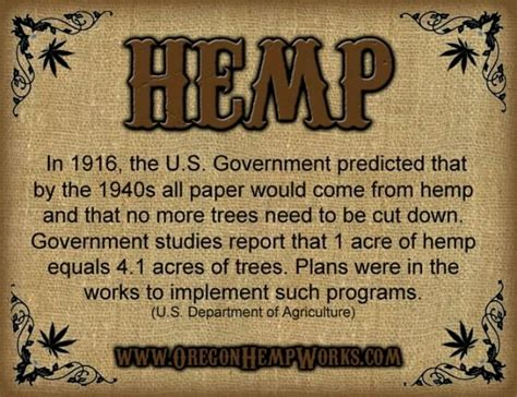 How To Make Hemp Paper - hemp paper can save trees cannabis hemp facts