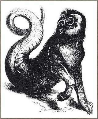 Manusia Serigala Segel Demonology Ensiklopedia Iblis2 Di Dunia