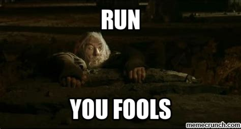 Meme Run - run you fools memes