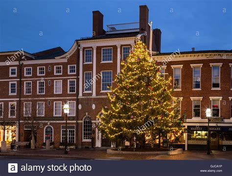 catchy collections of christmas tree in nh perfect homes