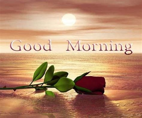 images of love with good morning romantic good morning sms good morning love sekspic com