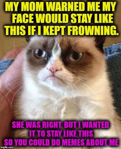 Frowning Cat Meme - frowning cat meme nyan cat vs grumpy cat animeme rap