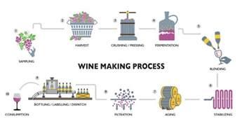 wine making process flowchart create a flowchart