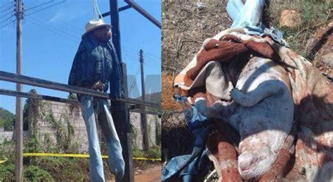 imagenes fuertes de ejecuciones asesinan perros simulando ejecuciones en nayarit